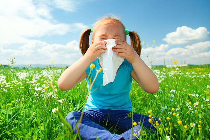 Allergies img